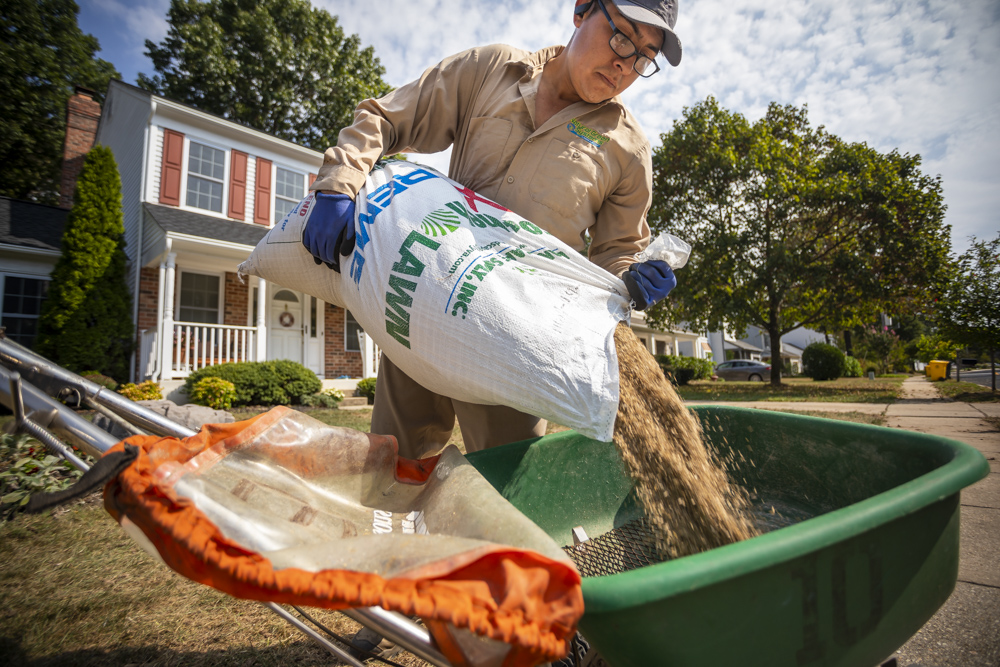 Natural Green team prepping grass seed for a lawn